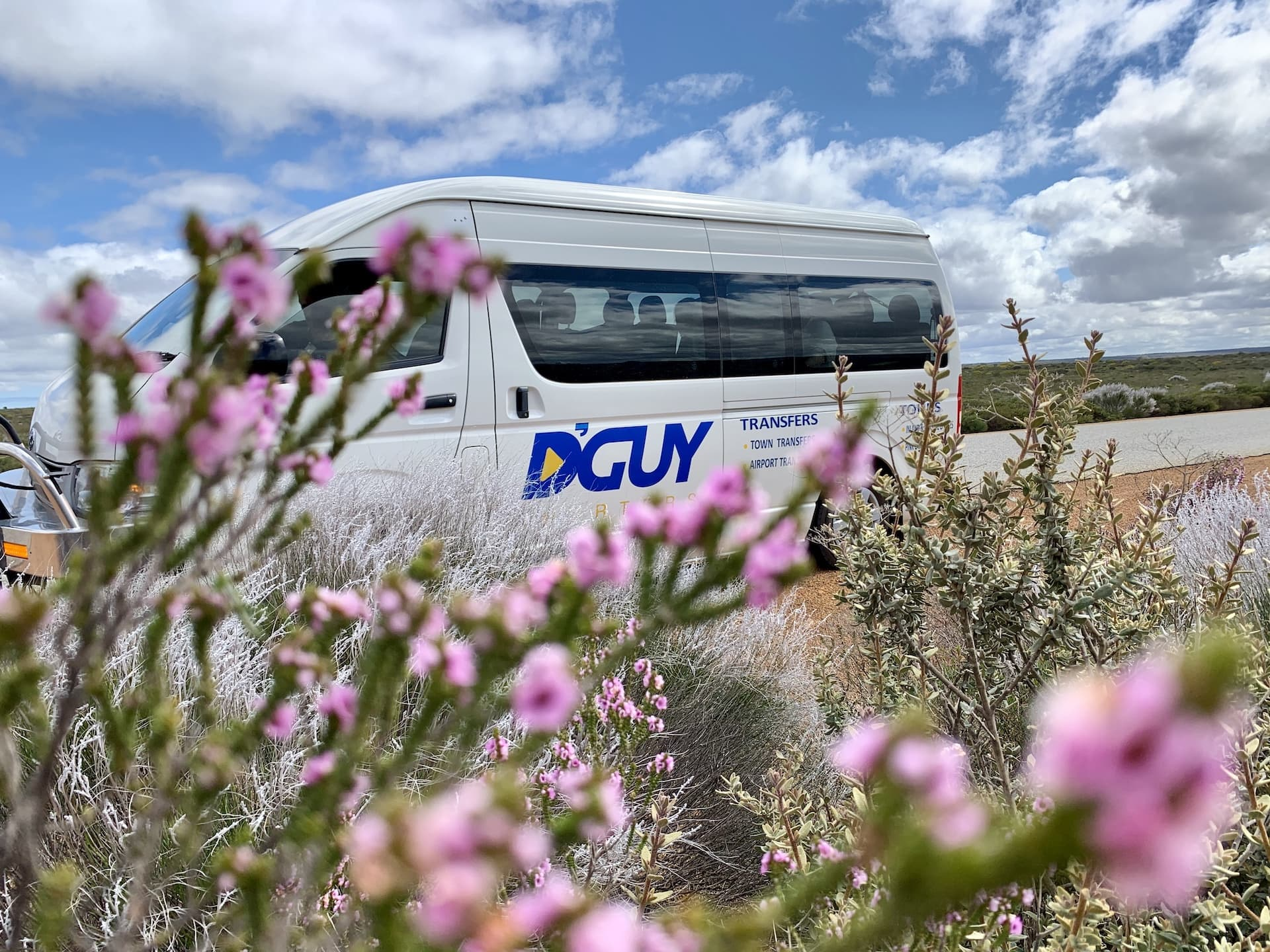D'Guy van amongst wildflowers in Kalbarri