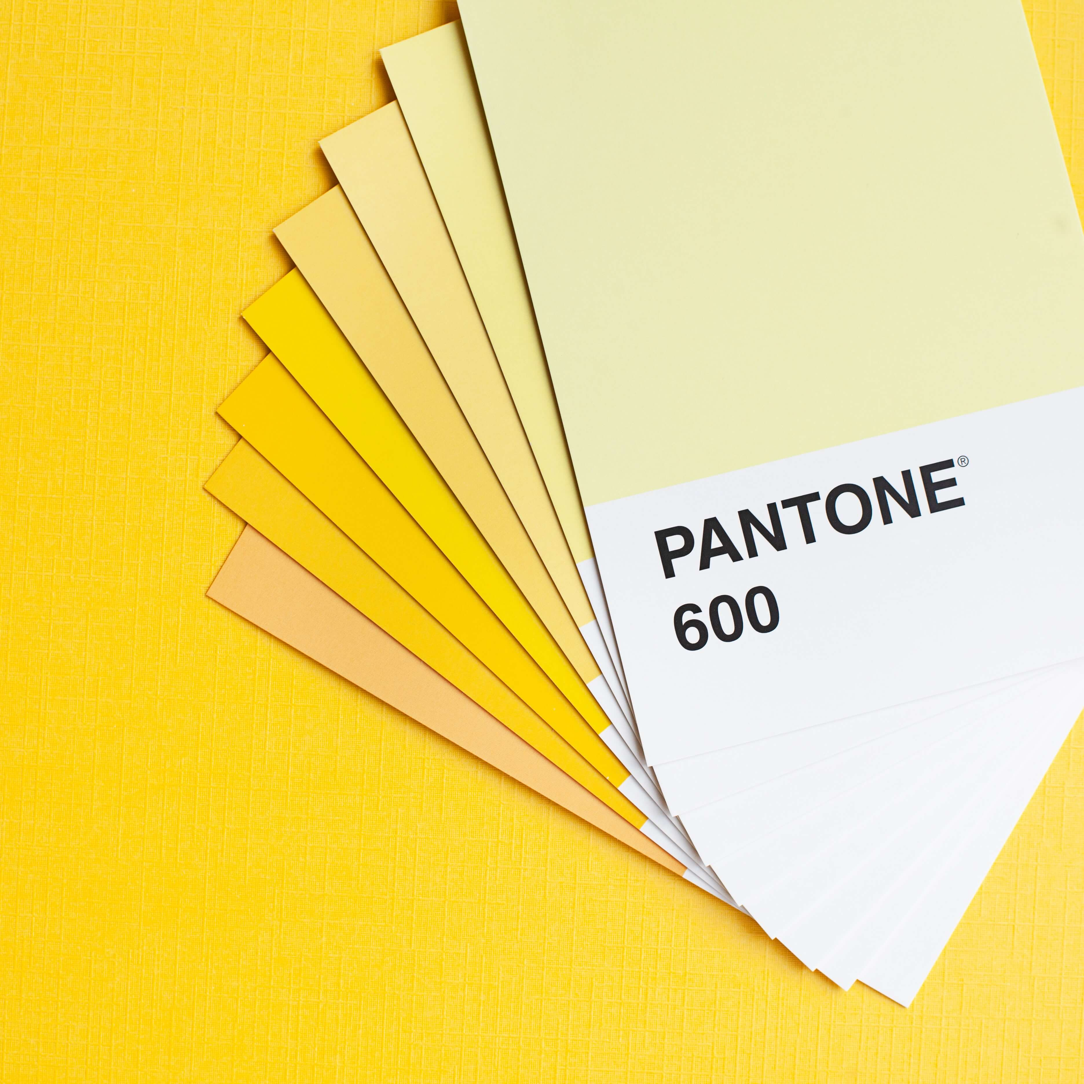 Mastering Color Theory for Web Design –The Easy Way