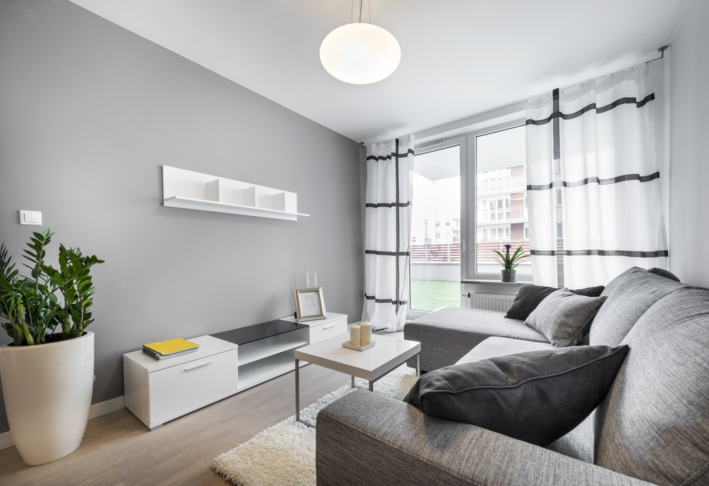 light gray small room color
