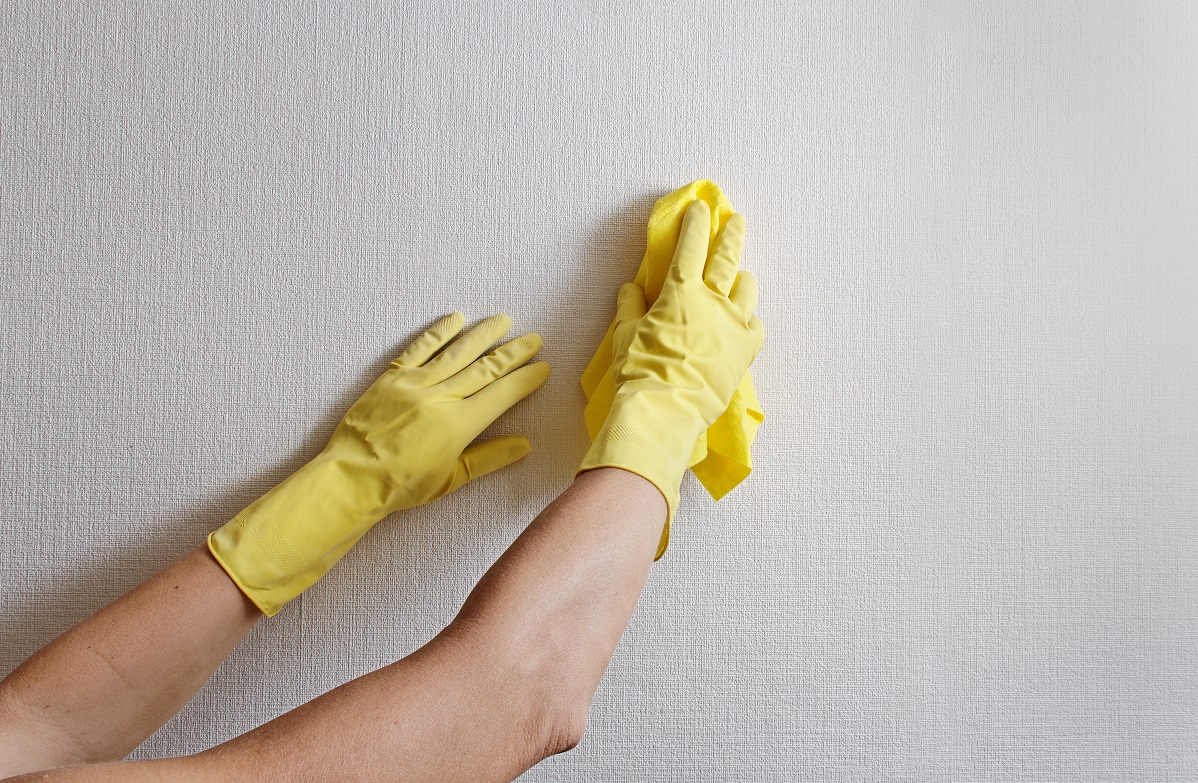 Clean the Wallpaper Walls Painting