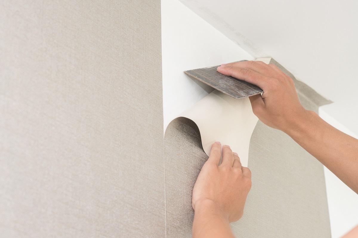 Fix Damages Wallpaper Painting