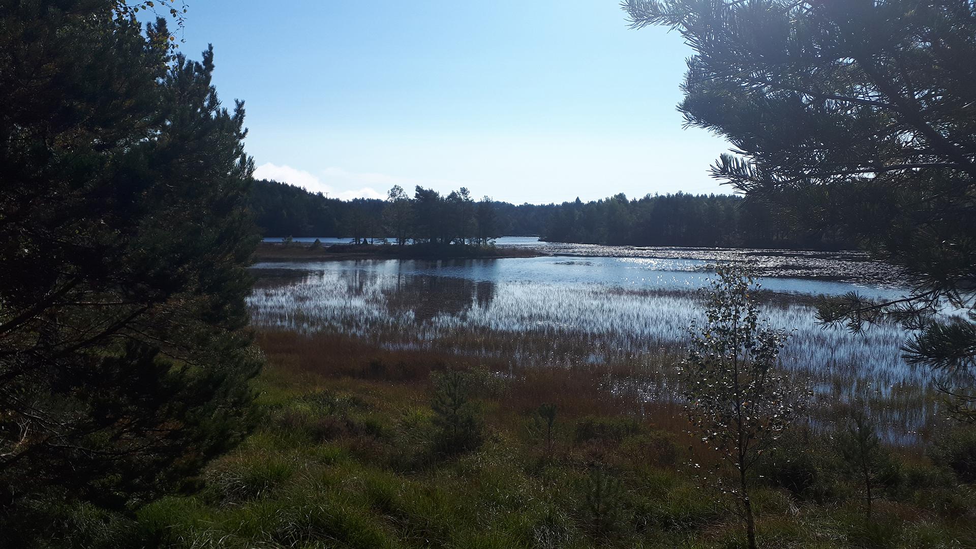 Flott natur i Jegersberg.
