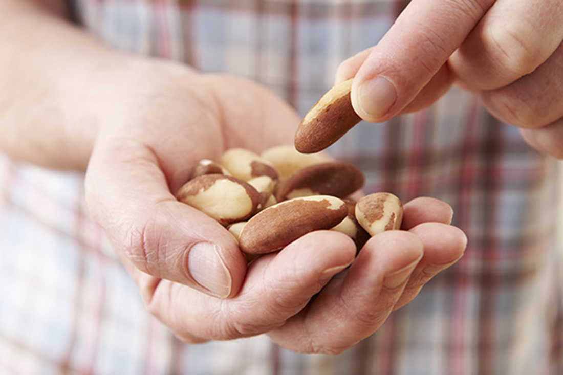 nuts  the ultimate superfood_body