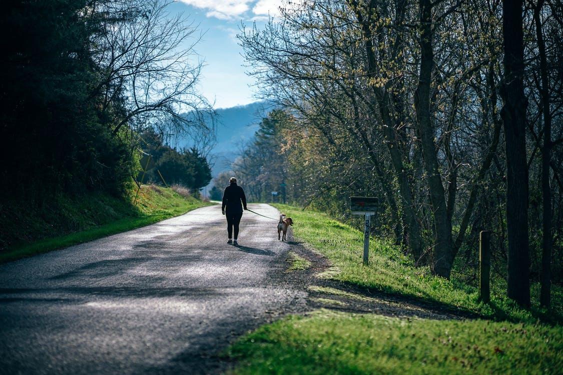 nature-walk|slow-down