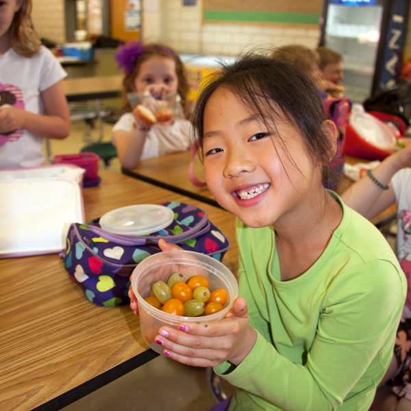 healthy school lunch|healthy-lunches|healthy-lunches|healthy-lunch