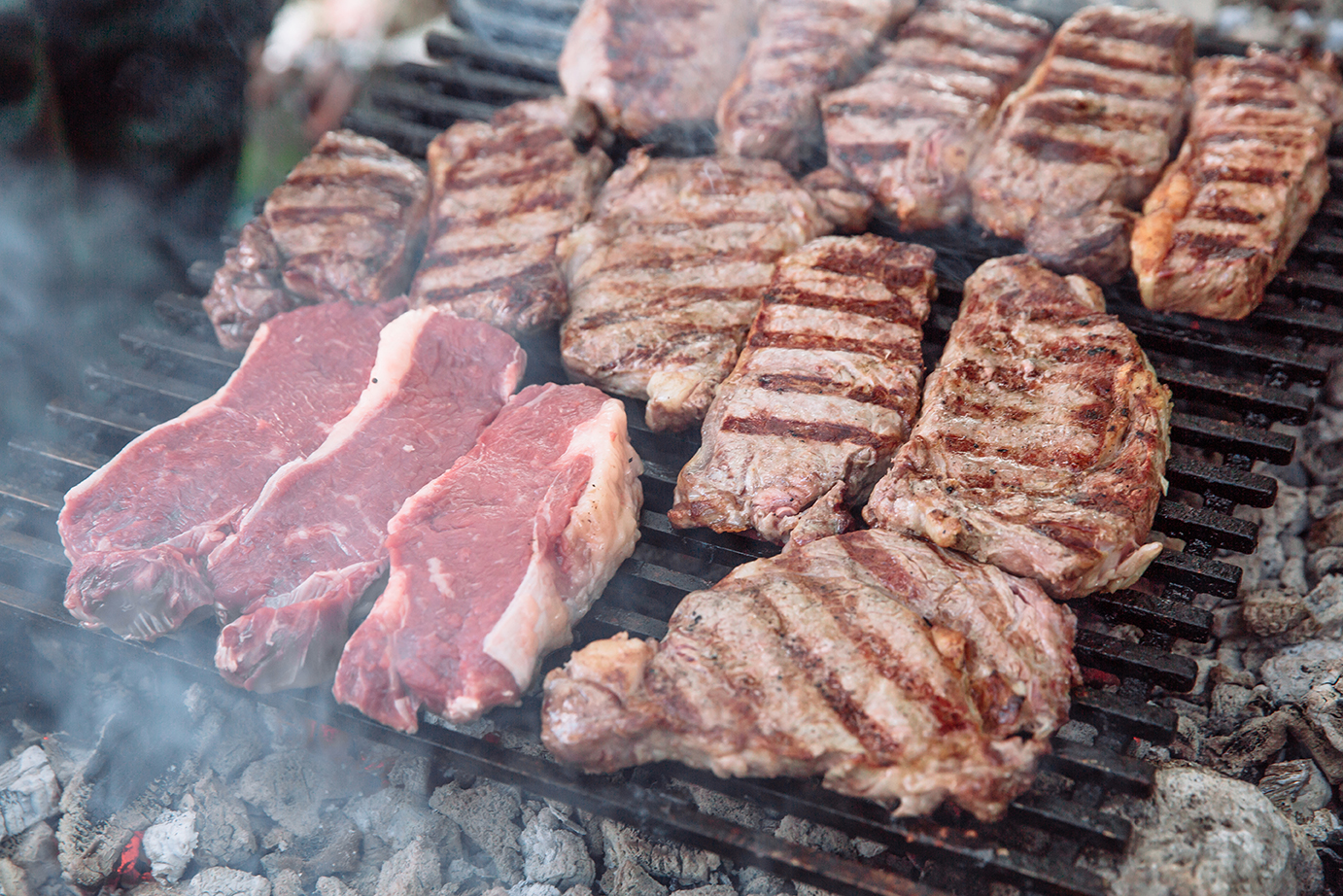 Lots of grilled steak.|protein-restriction-effects-diagram|protein