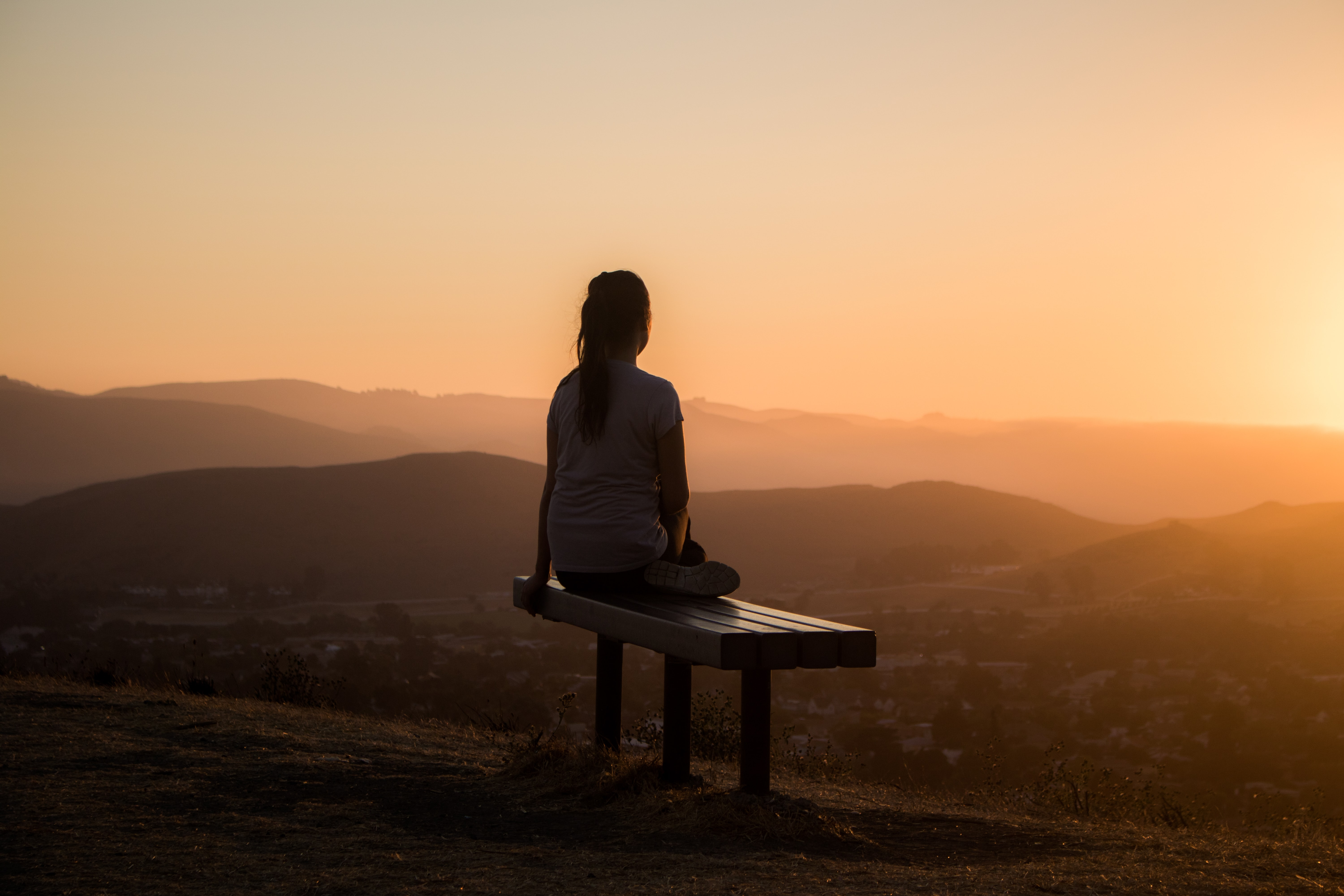 Surviving the Pandemic Through Mindfulness