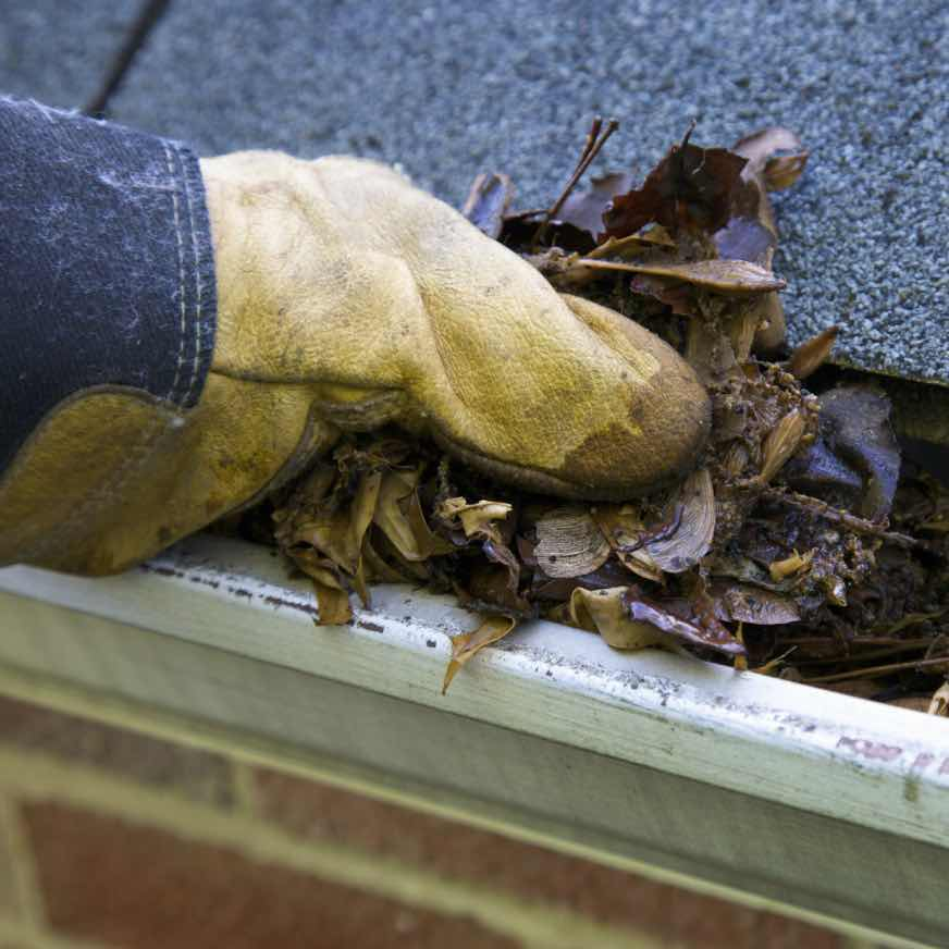 Gloved hand of 20/20 View employee cleaning leaves out of gutter in Columbus, OH