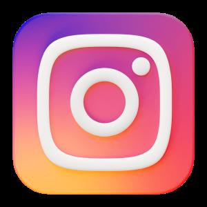 Instagram® Icon
