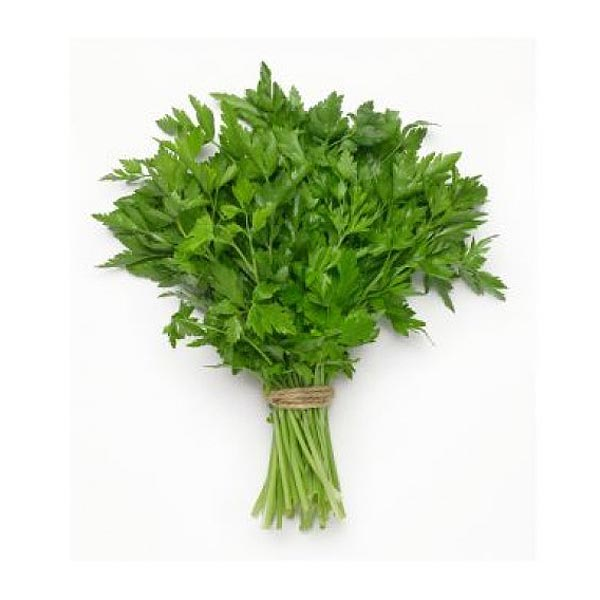 Continental Parsley - Bunch