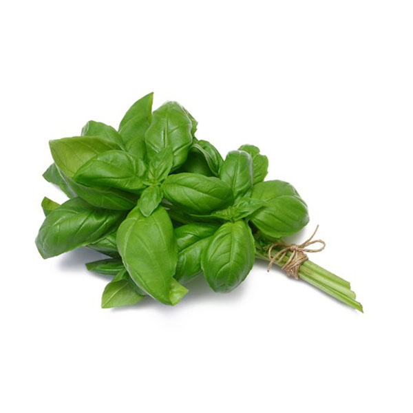 Herbs - Basil (bunch)