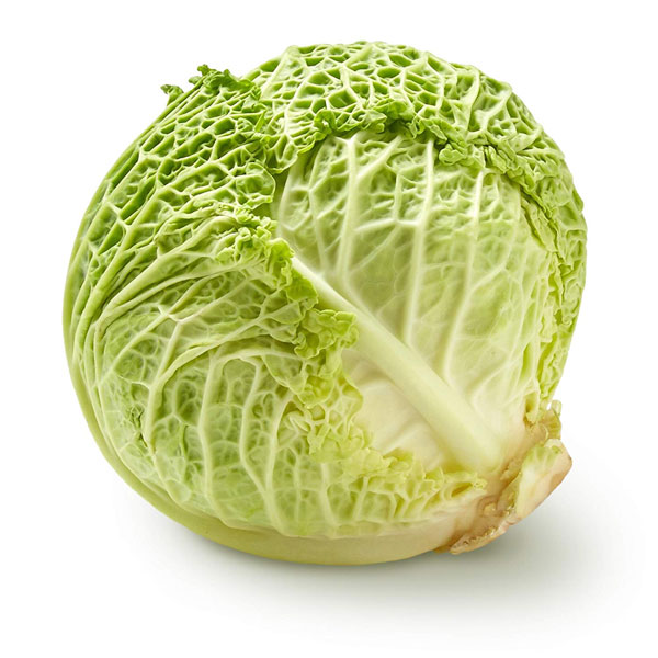 Cabbage / Green - Each