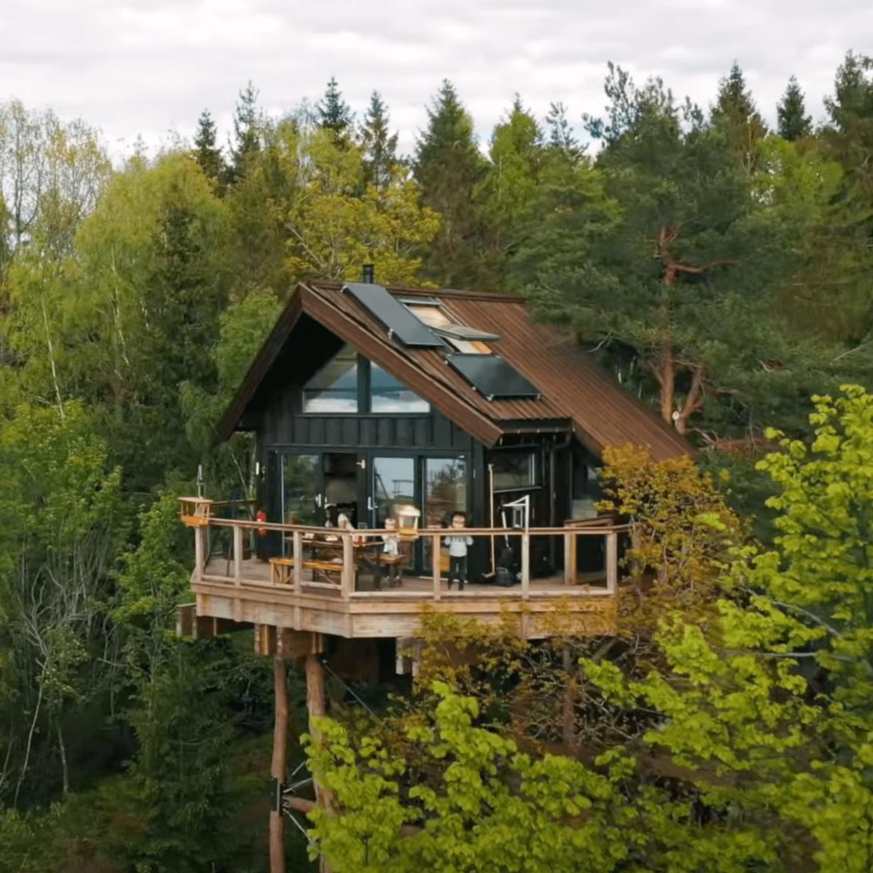 Tretopphytter i Oslofjorden