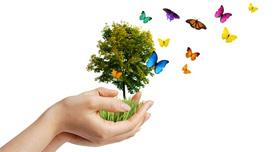 11 Ideen für Ihr digitales Healthcare-Marketing 2011