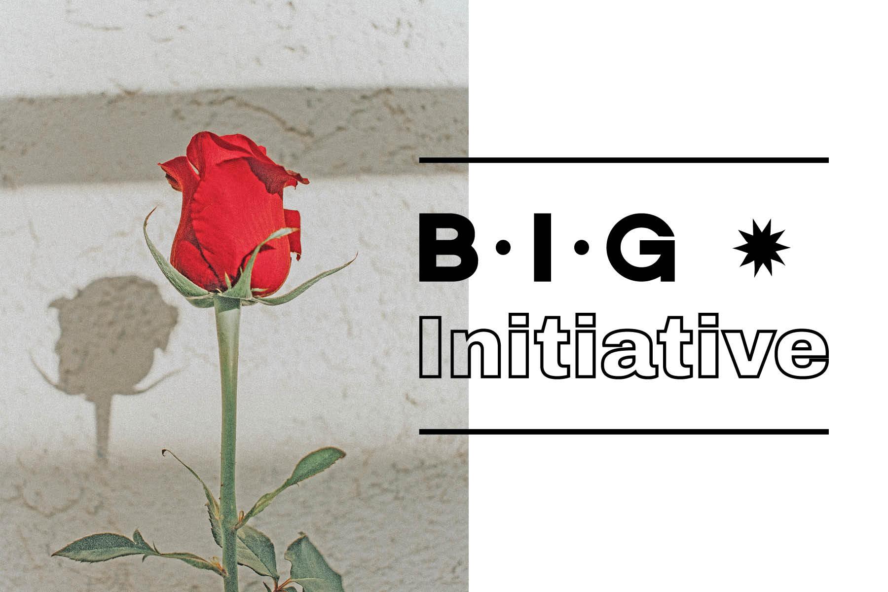BIG Initiative