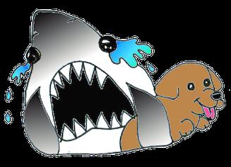 sharksobcopy2.png