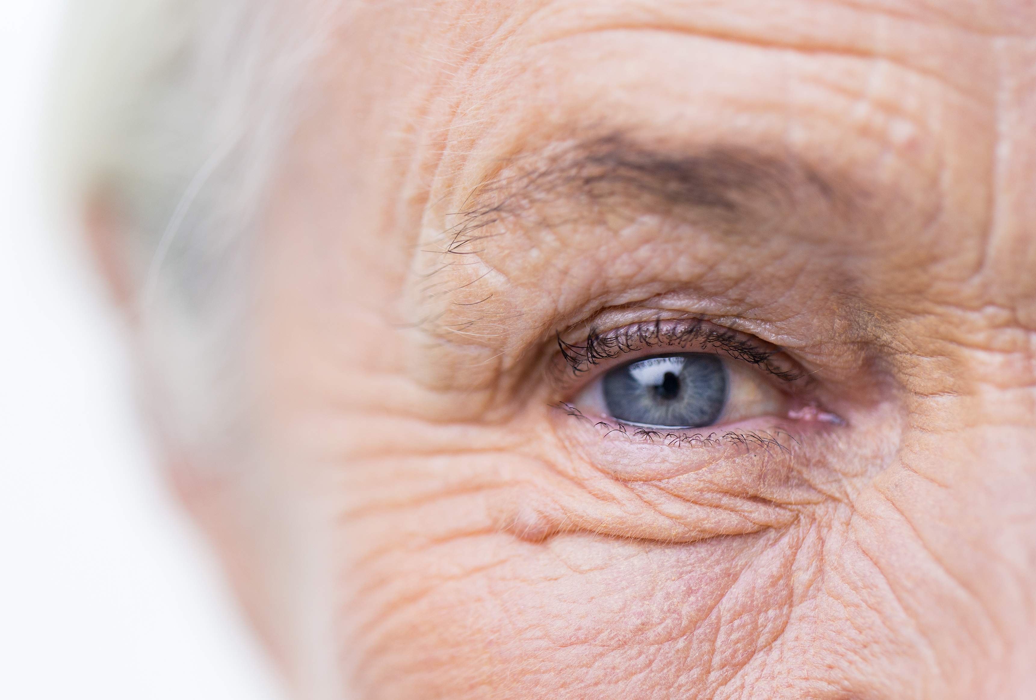 Vision Health for Seniors: What You Need to Know