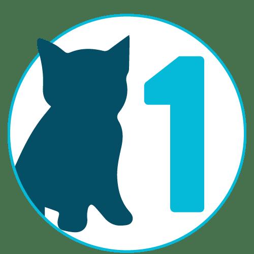 Kitten Visit #1