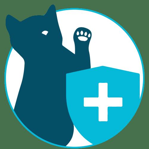 Preventative Care Cats