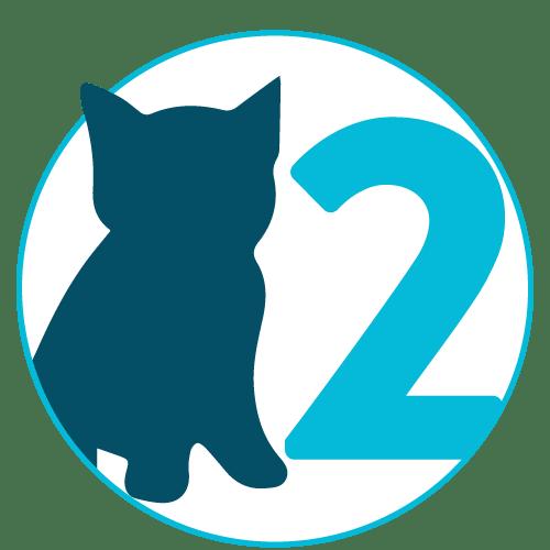 Kitten Visit #2