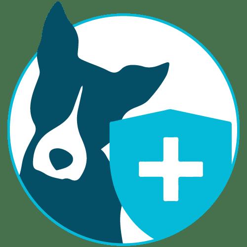 Preventative Care Dogs