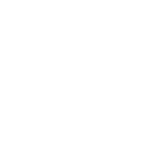 Lean Sonics Rocket icon white