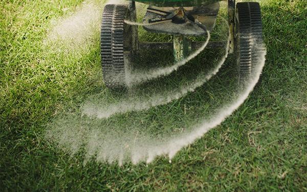 fertilization & weed control service