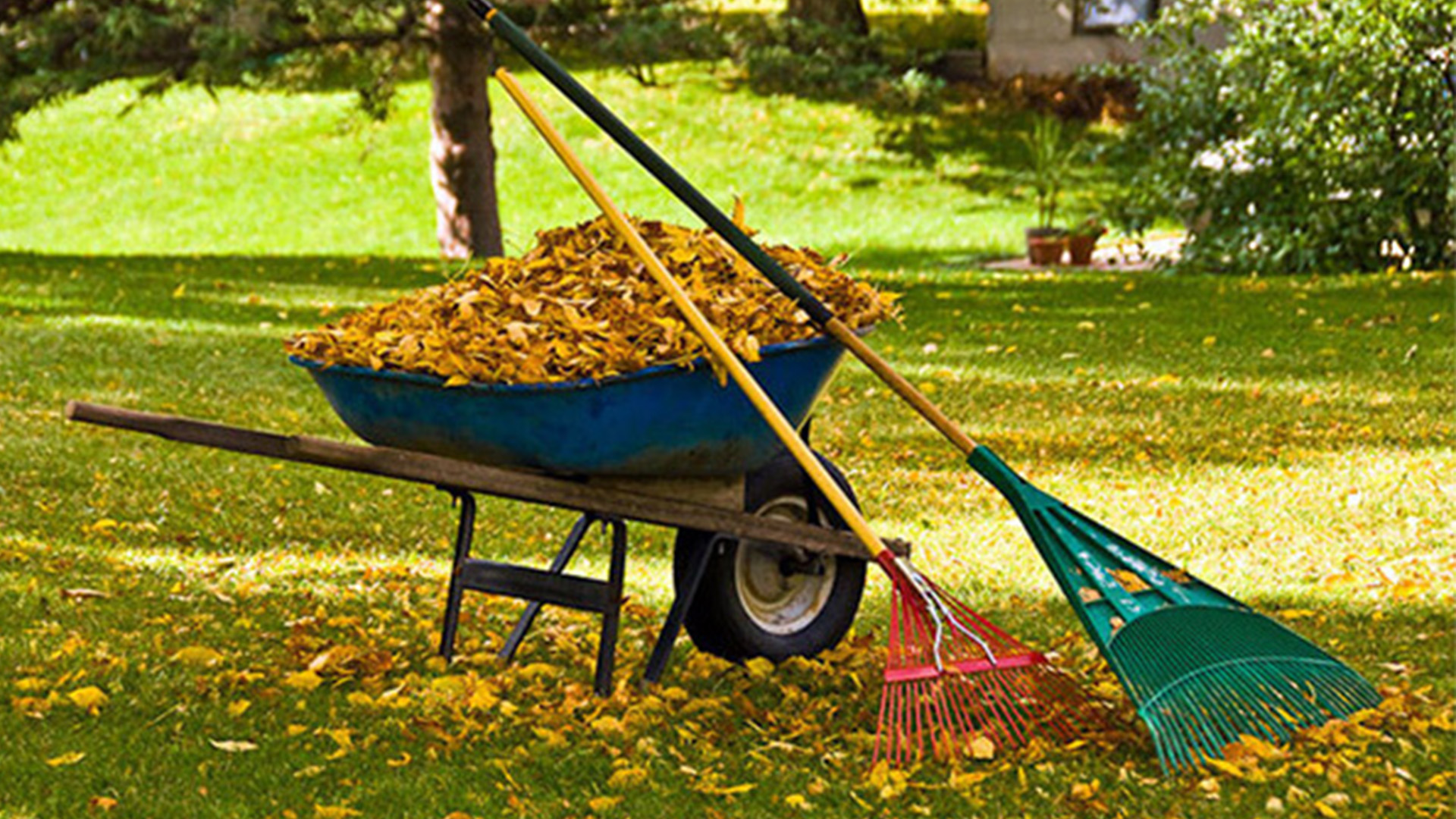 Fall Clean Up Service In Boise ID