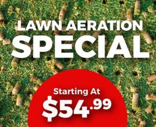 Lawn Aeration Price