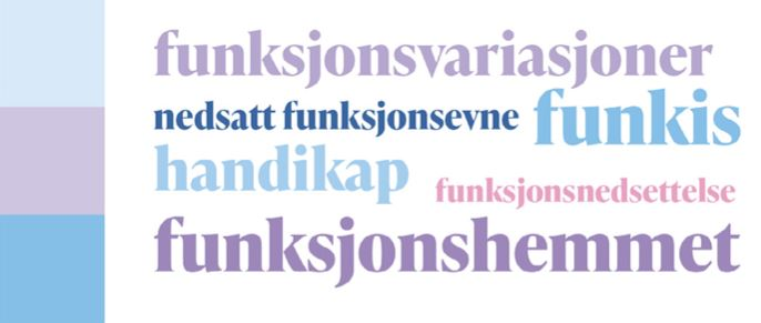 Plakat: Ulike ord for funksjonsnedsettelser i ulike farger. Funksjonsvariasjoner, nedsatt funksjonsevne, funkis, handikap, funksjonsnedsettelse, funksjonshemmet