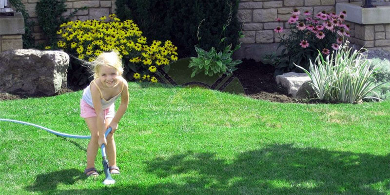 12 Reasons to Choose All Pro Lawn Service
