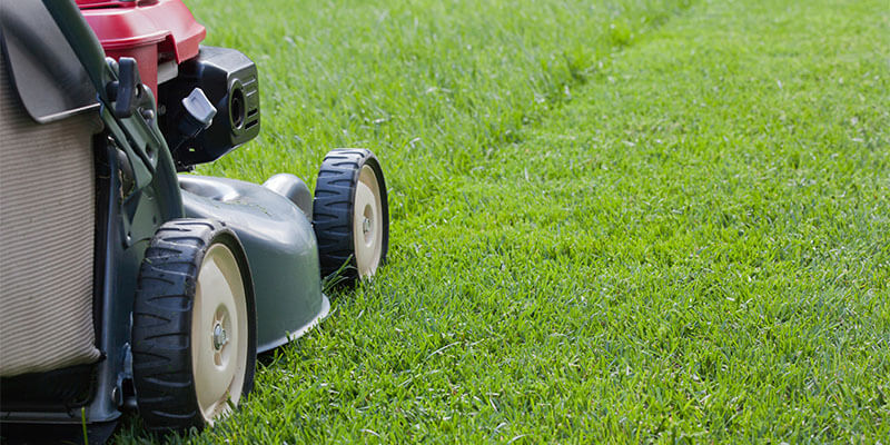 Lawn Care Mowing Tip