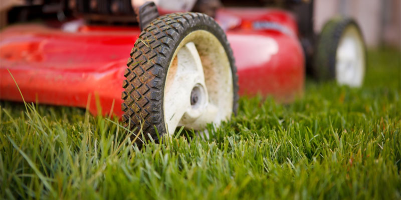 Mowing is Best When Your Lawn is Dry