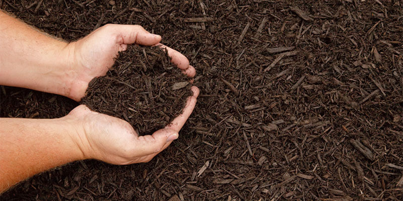 Top 3 Reasons to Mulch your Lawn
