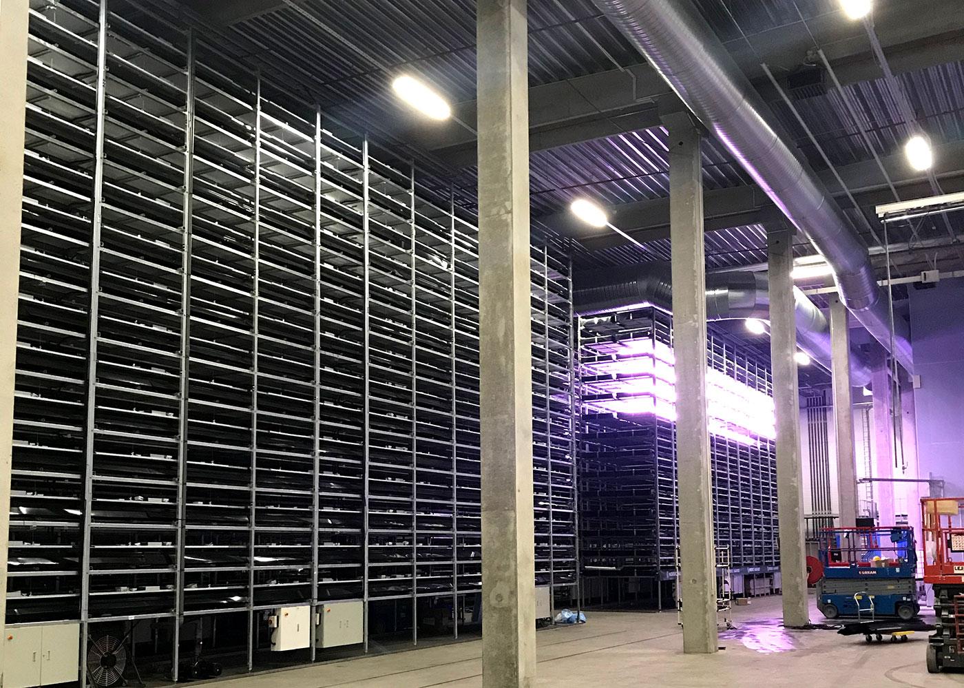 indendørs foto af det vertikale landbrug, da lysene begyndte at blive tændt