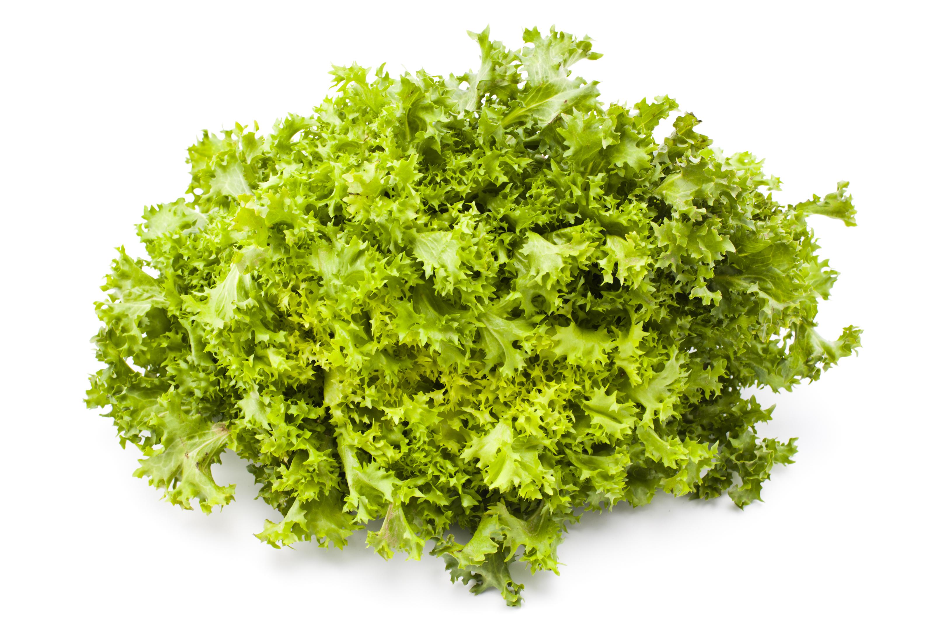 Bæredygtige salater fra en vertikal farm