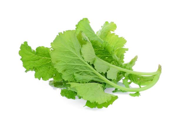 Vertikal sennepssalat - sprødt, friskt og smagfuldt