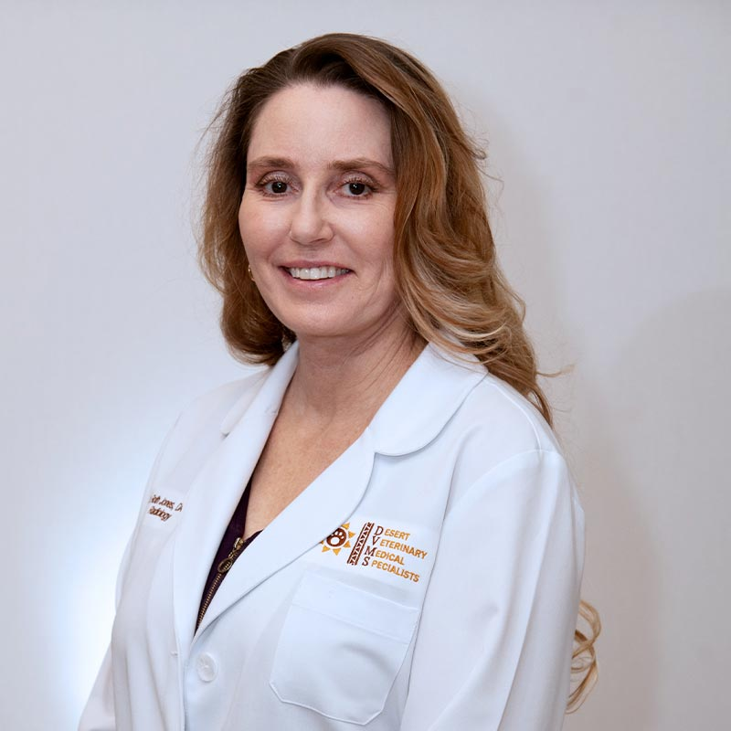 Dr. Amy Roth-Jones