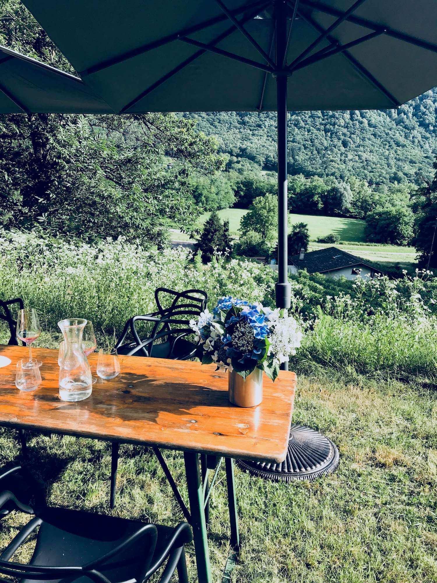 Viticoltura e Vini Rohner Erni - Degustazioni