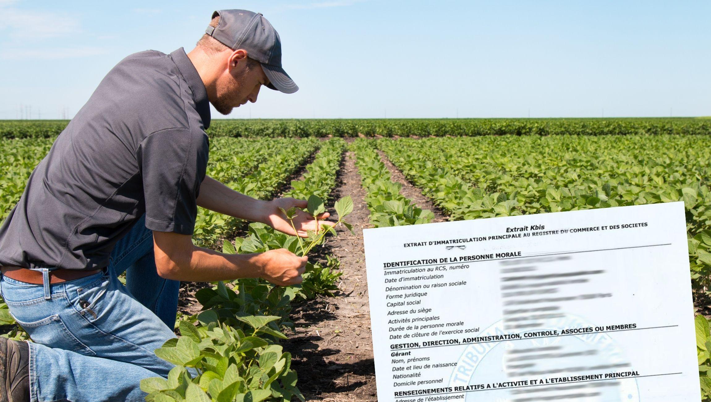 Extrait KBIS pour agriculteur