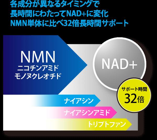 各成分が異なるタイミングで長時間にわたってNAD+¥に変化。NMN単体に比べ32倍長時間サポート