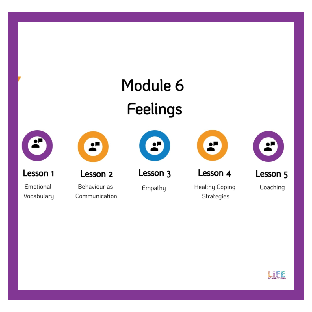 Description of module 6 about Feelings in the Life Connections RSE e-learning resource for parents and guardians of 10 to 12 year old children in Ireland