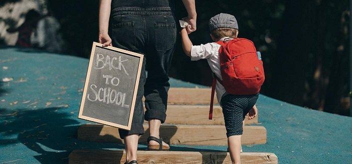 Herndon and Reston School Lice Policies