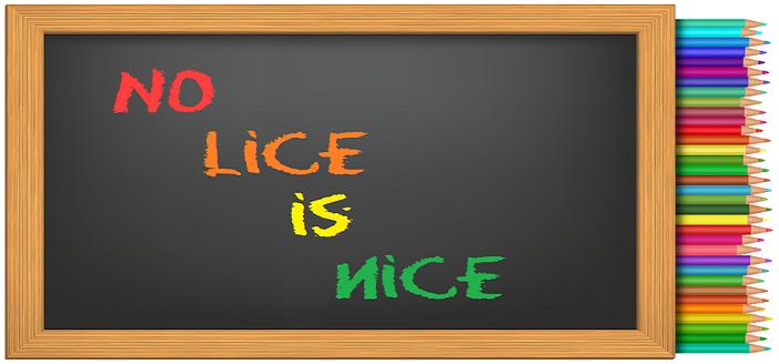 Vallejo School Head Lice Policy