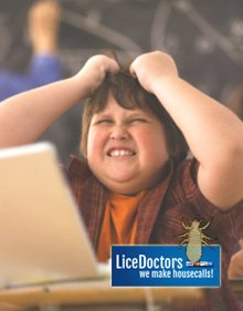 What Can A Lice Professional Do For Me?