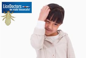 Does My Child Have Head Lice?