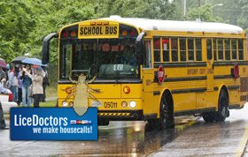 Calling For Major Lice Initiative Through Schools