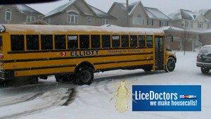 Anchorage School Lice Policy