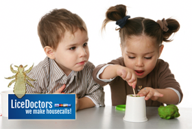 Pre-Schoolers and Head Lice | Prevention Tips