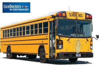 Springfield School Lice Policy